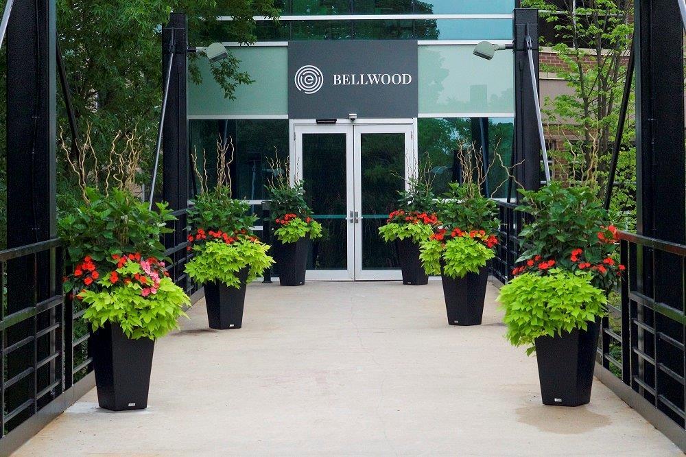 Bellwood Alumni